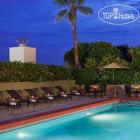 Фото отеля Sheraton Orlando Downtown 3*