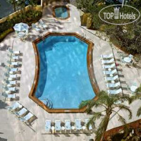 Фото отеля DoubleTree by Hilton Hotel Miami Airport & Convention Center 3*