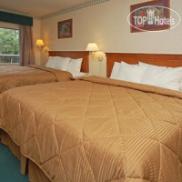 Фото отеля Comfort Inn & Suites San Francisco Airport North 3*