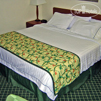 Фото отеля Motel 6 Cleveland-Willoughby 3*