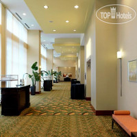 Фото отеля Raleigh Marriott City Center 3*