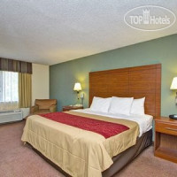 Фото отеля Comfort Inn & Suites Crabtree Valley 3*