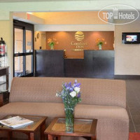 Фото отеля Comfort Inn University Durham 2*