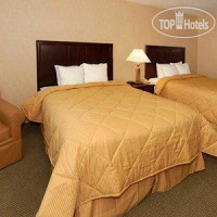 Фото отеля Comfort Inn & Suites Near Lake Lanier 3*