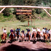 Фото отеля K-Diamond-K Guest Ranch No Category