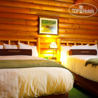 Фото отеля Togwotee Mountain Lodge 2*