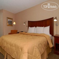 Фото отеля Comfort Inn Downtown 3*