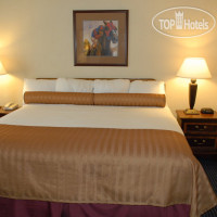 Фото отеля Best Western Winners Circle Inn 2*