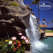 Фото отеля Four Seasons Resort Maui at Wailea 5*