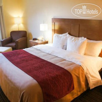 Фото отеля Comfort Inn King George 2*