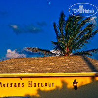 Фото отеля Morgan's Harbour 3*