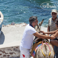 Фото отеля Canaves Oia 5* Donkey riding