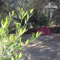 Фото отеля Camping Paleokastritsa No Category