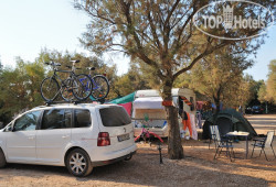 Camping Proti No Category