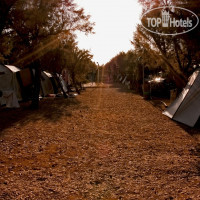 Фото отеля Camping Proti No Category