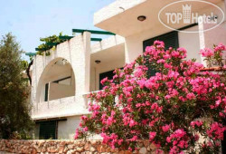 Phaistos Bungalows APT