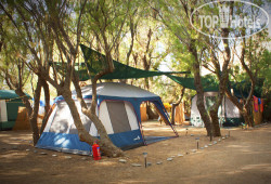 Camping Nopigia No Category