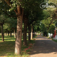 Фото отеля Senato Park Camping No Category