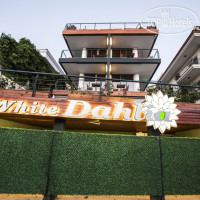 Фото отеля White Dahlia Hotel No Category