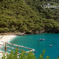 Фото отеля Chakra Beach Kabak Hotel No Category