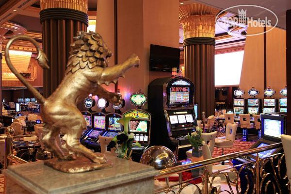 Казино северный кипр, рейтинг казино роз казино ремонтантна