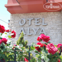 Фото отеля Alya Hotel No Category