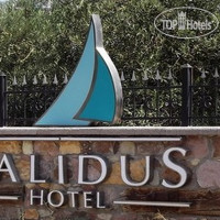 Фото отеля Calidus Hotel No Category