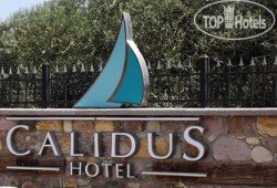 Calidus Hotel No Category