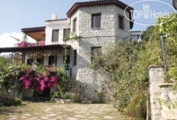 Bougain Villa No Category