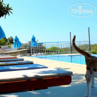 Фото отеля Patara Sun Club No Category