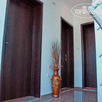 Фото отеля Ivanovic Apartments 3*
