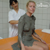 ���� ����� Mediterranean Health Center Igalo Dr.Simo Milosevic (Institute Igalo) 3* � ������������ ������� (������ ����), ����������