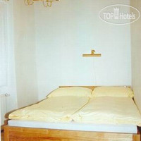 Фото отеля The Golden horse house 3*