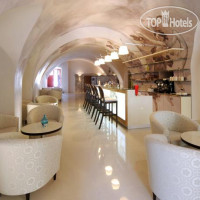 Фото отеля Chateau Heralec Boutique Hotel & Spa 5*