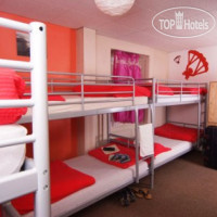 Фото отеля The Lazy Falken Hotel & Backpackers 2*