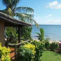 Фото отеля Coconut Grove Beachfront Cottages 2*