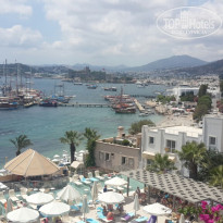 Фото отеля Diamond of Bodrum 5* вид из отеля