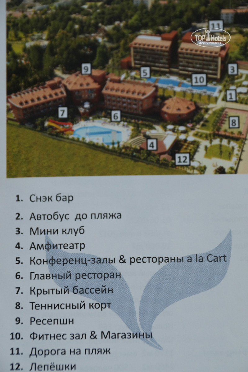 All Photos Hotel Map Otelya Club Side Coast 5 Rating Of World