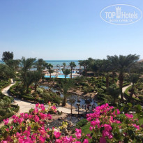 Фото отеля Moevenpick Resort & Spa El Gouna 5* Террирория