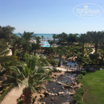 Фото отеля Moevenpick Resort & Spa El Gouna 5* Территория
