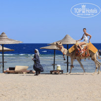 Фото отеля Nada Marsa Alam Resort 4* пляж у отеля