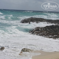 Фото отеля Melia Cozumel All Inclusive Golf & Beach Resort 5* Дикий пляж