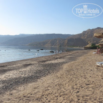 Фото отеля Movenpick Resort Taba 5* Пляж отеля
