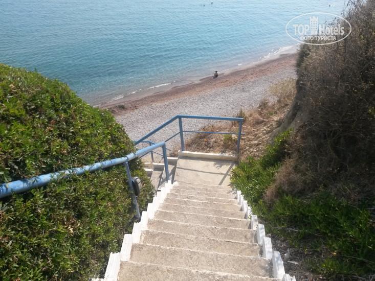 для подготовки лестница спуск к морю в кринице фото поколение