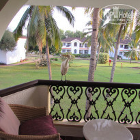 Фото отеля Holiday Inn Resort Goa 5* Гости на балконе.