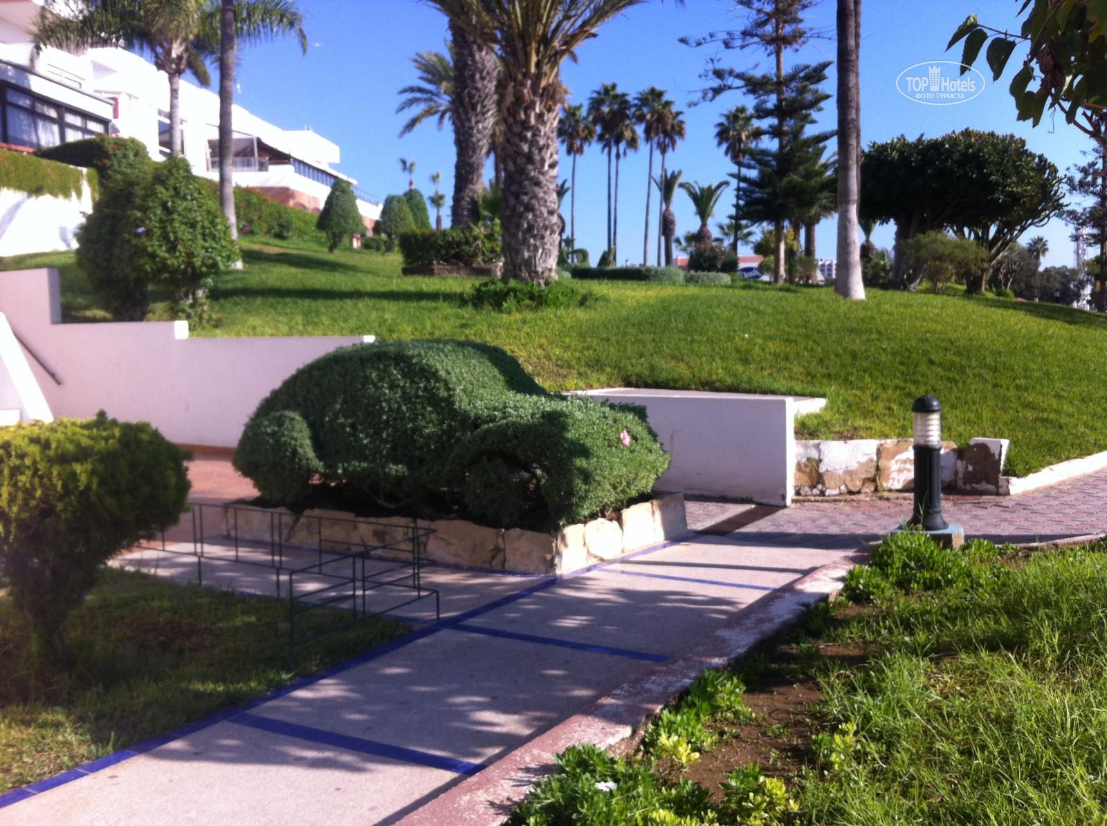 All photos: Hotel photo отеля Al Moggar Garden Beach Club 4*. Rating ...