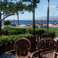 Фото отеля Movenpick Resort Taba 5* бар на пляже