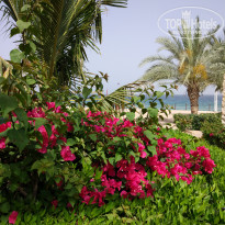 Фото отеля Le Meridien Al Aqah Beach Resort 5*