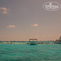 "Фото отеля Atlantis Paradise Island Resort (Royal Tower) 5* ""Город"" скатов"
