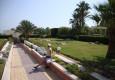 купить дешево тур Египет для семейного отдыха